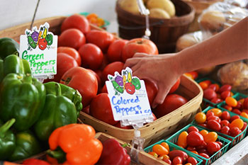 Locally grown vegetables, from asparagus to tomatoes, sweet corn, peppers and more!  Visit Ter-Lee Gardens Farm Market at the Bemidji and Bagley area farmers' markets in Minnesota.